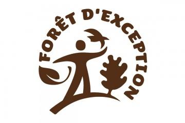 """La Forêt de Boscodon obtient le label """"Forêt d'Exception"""""""