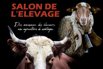 Salon de l'Elevage Haut-Alpin 2019