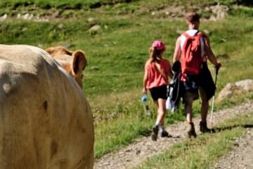Journée en Alpage Crevoux
